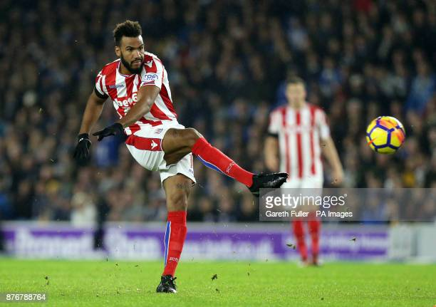 Stoke City's Eric Maxim ChoupoMoting has a shot at goal during the Premier League match at the AMEX Stadium Brighton