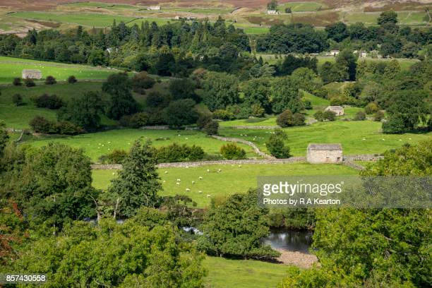 Stone barn beside the river Swale, Yorkshire Dales, England