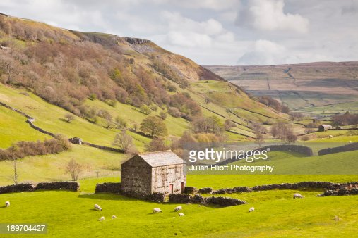 Stone barn in the Swaledale area of the Dales. : Stock Photo