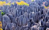 Tsingy de Bemaraha National Park, Mahajanga province, Madagascar: karst limestone formation - UNESCO World Heritage Site - photo by M.Torres