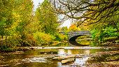 Stone bridge spanning Beargrass Creek in Cherokee Park Louisville, Kentucky.