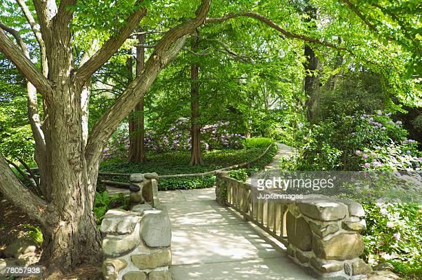 Stone bridge in woods