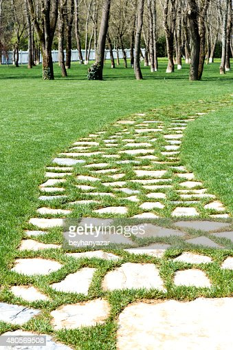 Stone footpath and lawn in garden : Stock Photo