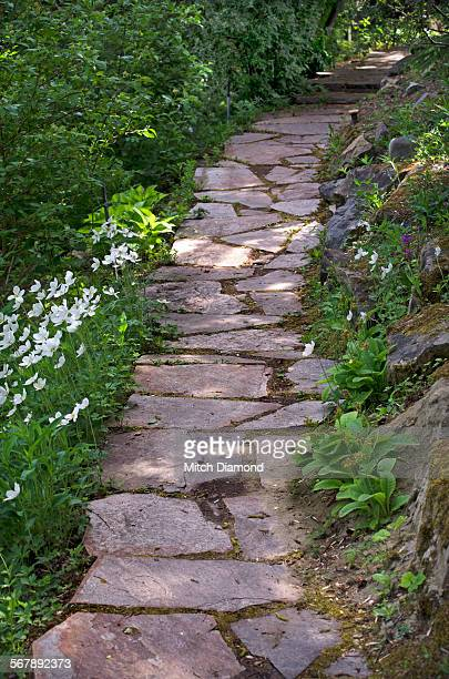 Stone path in the Reader Rock Gardens