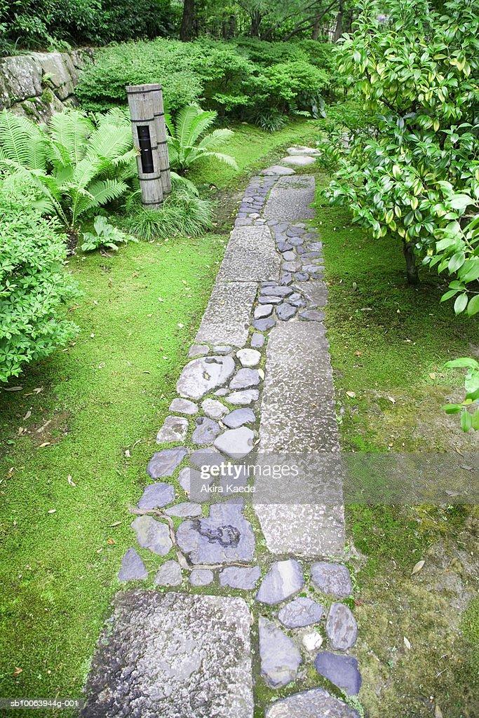 Stone pavement : Stock Photo
