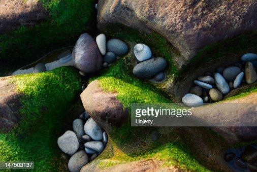 stone : Stock Photo