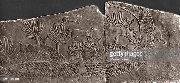 Stone relief from the palace of Ashurbanipal Deer are hunted and caught in a net Assyrian Late Assyrian c 645 BC Nineveh Assyria Ancient Iraq