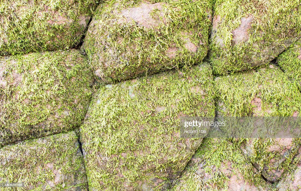 stone walls : Stock Photo