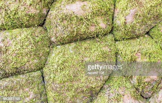 Les murs en pierre : Photo