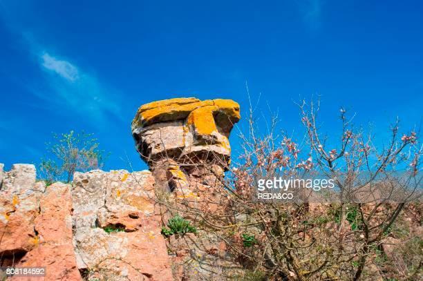 StoneHead Macomer Provincia di Nuoro Sardinia Italy Europe