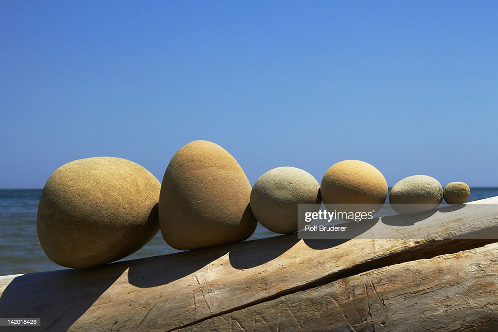 Stones lined up on driftwood : Stock Photo