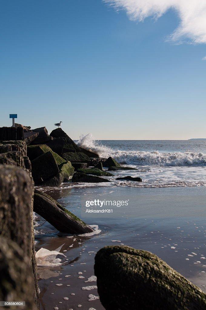 Stones on Brighton Beach. : Stock Photo