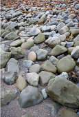 Stones on the beach at Ballinskelling beach, Ireland