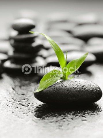 stones : Stock Photo