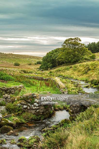 Stoney brook in English countryside