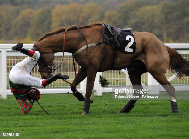 Stoney's Treasure unseats his rider Robert Thornton at the last fence during The Atlantic Enterprises Handicap Steeple Chase during the November...