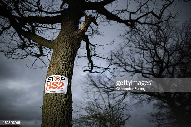 A 'Stop HS2' poster is fixed to a tree in the countryside surrounding the village of Middleton in Staffordshire on January 29 2013 in Middleton near...