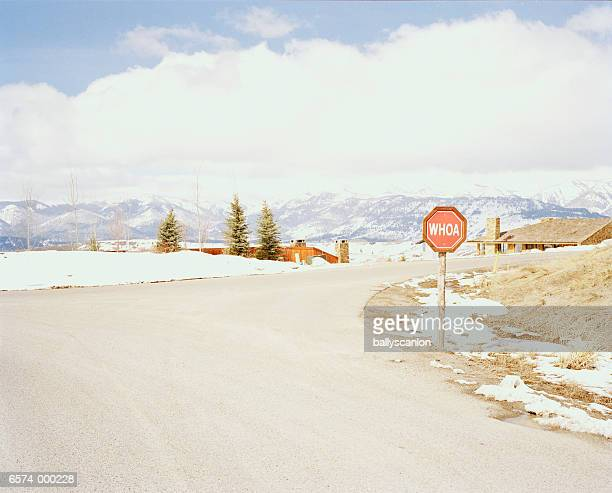 Stop Sign and Road