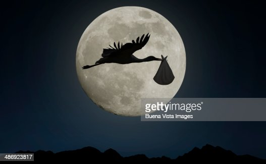 Stork carrying bundle with baby in full moon