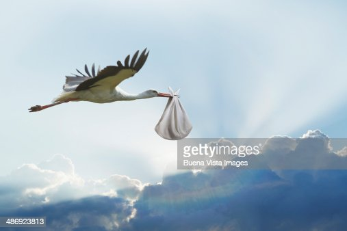 Stork carrying bundle with baby