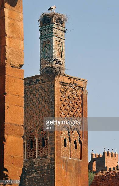 A stork rests at the top of a minaret in the archealogical site of Chellah the site of the ruins of the ancient Roman town known as Sala Colonia part...