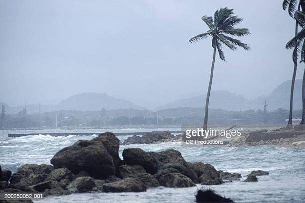 Storm at coast in Puerto Rico