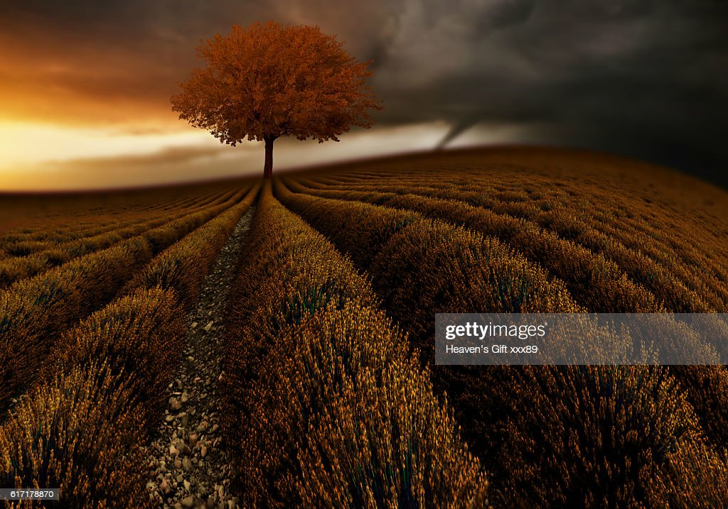 storm brewing : Stock Photo