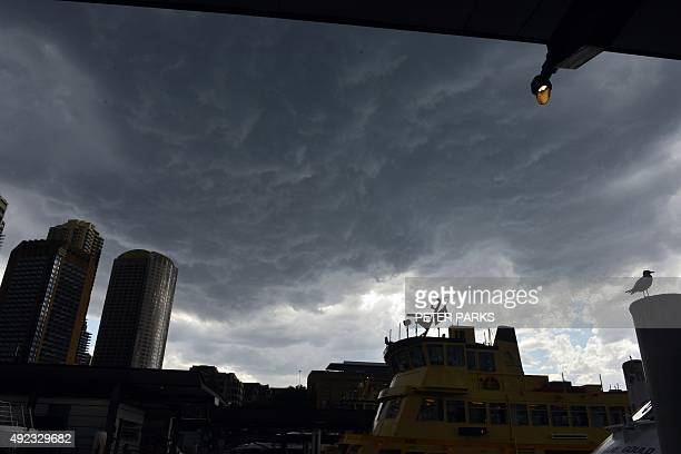 Storm clouds gather over The Rocks district of Sydney on October 12 2015 AFP PHOTO / Peter PARKS