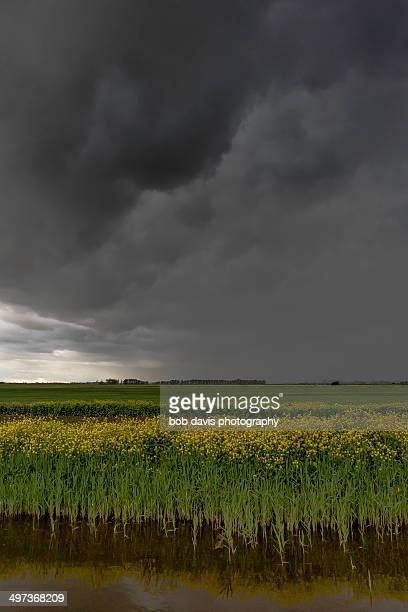 storm clouds over thorney river
