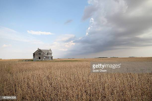 Storm clouds pass over a soybean field on October 2 2013 near Salem South Dakota According to the Commerce Department farm earnings nationwide were...