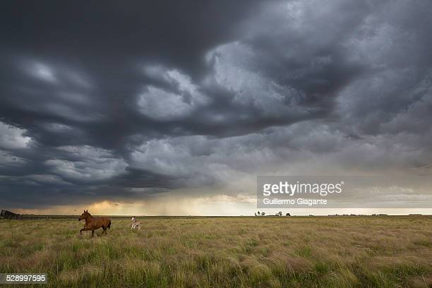 Storm in the Pampas