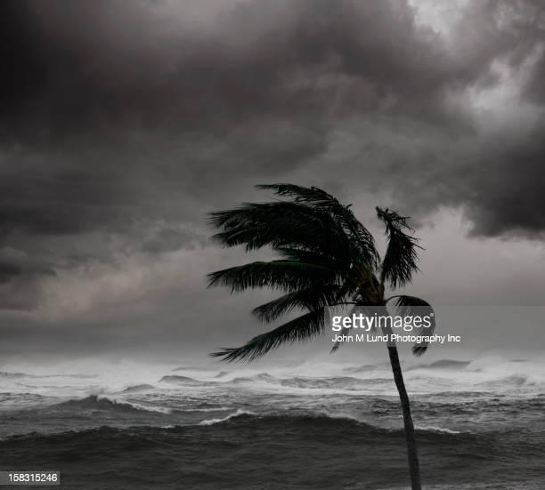 Storm over tropical sea