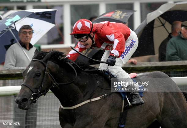 Stormy Whatever and jockey Frederik Tylicki wins the British Stallion Studs Supporting British Racing EBF Maiden Stakes at Catterick Racecourse