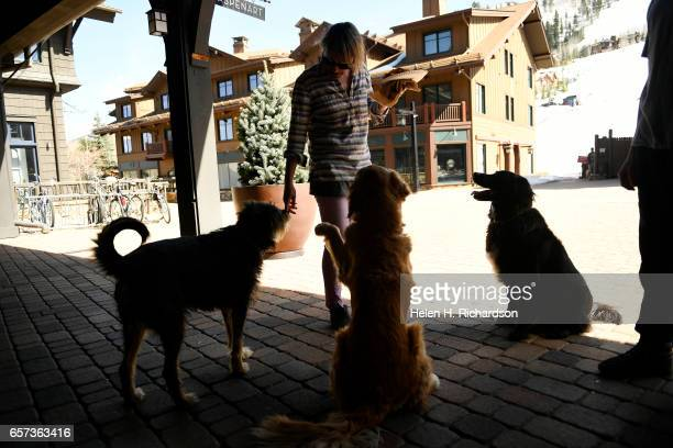 Strafe Outerwear merchandiser and designer Pia Halloran has some fourlegged admirers as she enjoys her lunch outside the Strafe offices at the base...