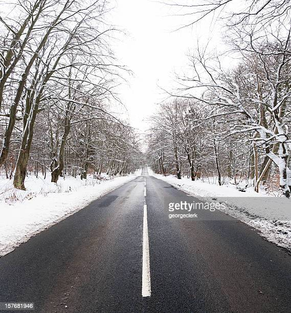Straight Winter Road