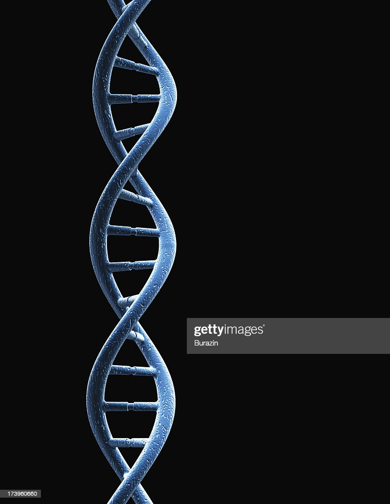 DNA strand : Stock Photo