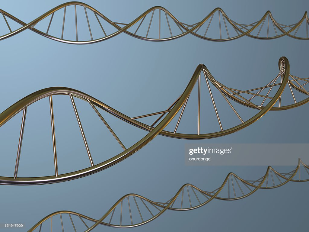 DNA Strands : Stock Photo