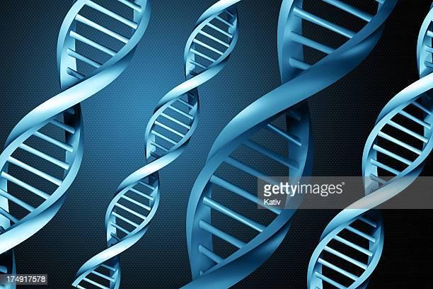 DNA-Stränge (XXL