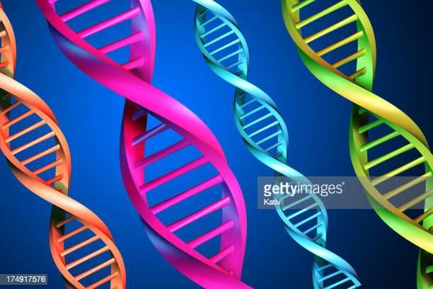 DNA-Stränge XXL