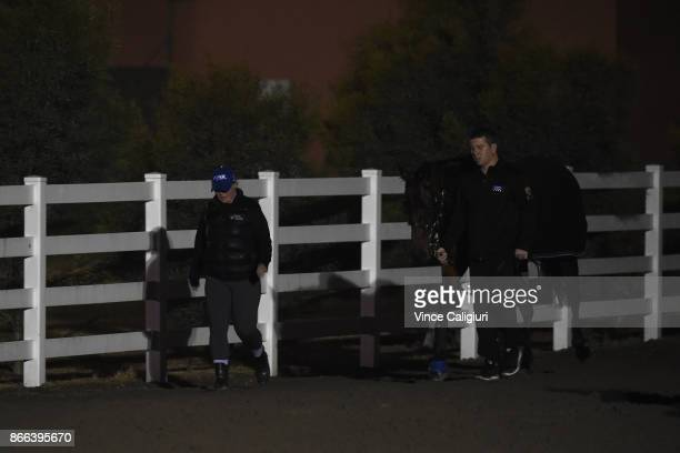 Strapper Umut Odemislioglu and Johanne Taylor stable foreperson take Champion mare Winx for a walk after a light trackwork session ahead of trainer...