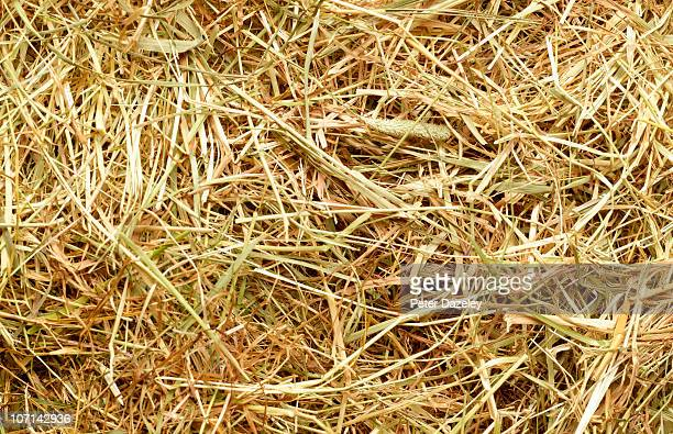 Straw and grass full frame background