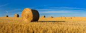 Straw Bale Harvest in Stubble Field under Blue Sky