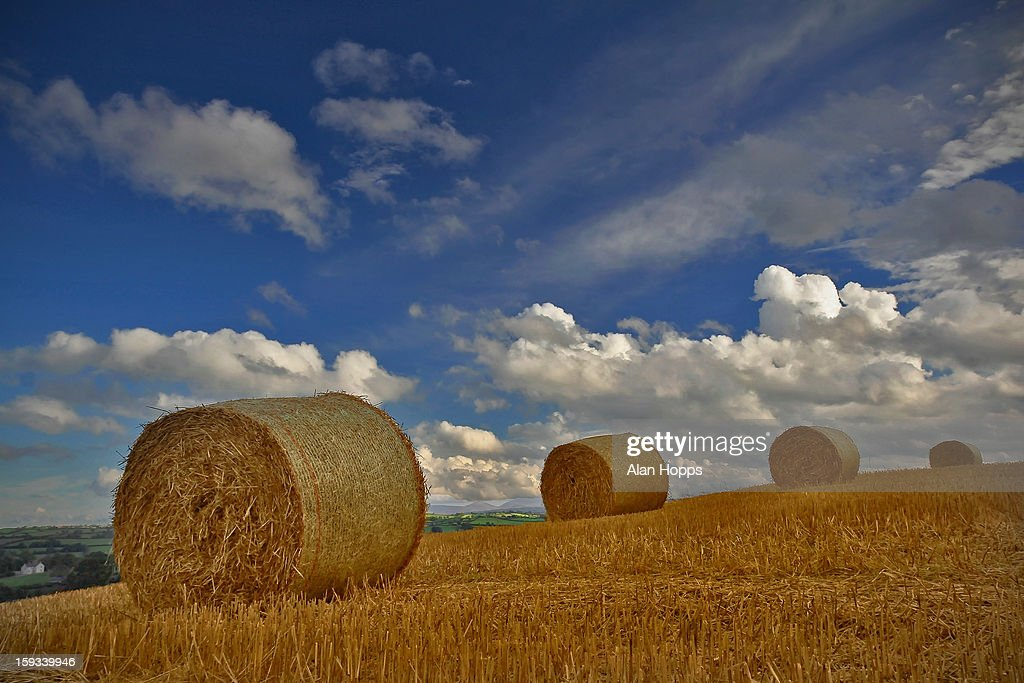 CONTENT] Straw baled close to Acton, Co Down Northern Ireland. Some of the little straw that made it to the bale in this country. Ground sodden under foot here. Within 20mins of this photo being taken there was hailstones and thunder and lightning. At least it made for a nice sky. Polarizer on the Sigma 17-70 for this. This s on the farm of John Best.
