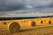 Straw bales, Cotswolds, Oxfordshire, UK
