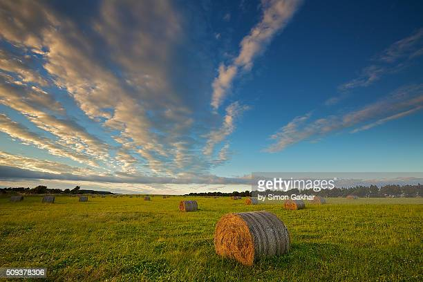 Straw Bales under a Sunset Sky