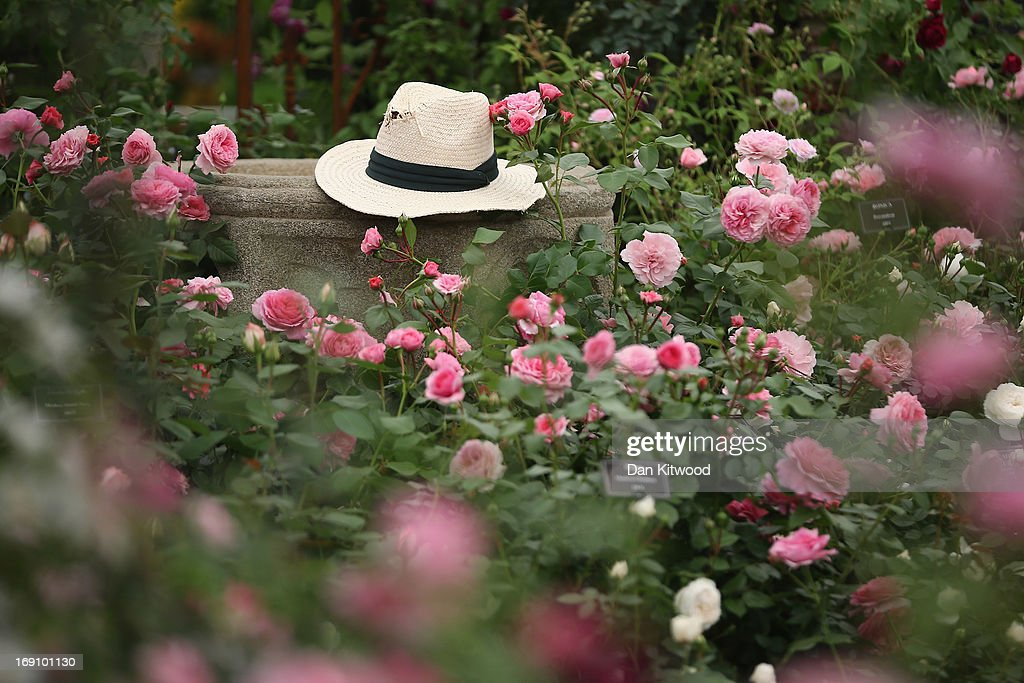 A straw hat sits on a rose garden wall during the Chelsea Flower Show on May 20, 2013 in London, England. The Chelsea Flower Show run by the RHS celebrates its 100th birthday this year.
