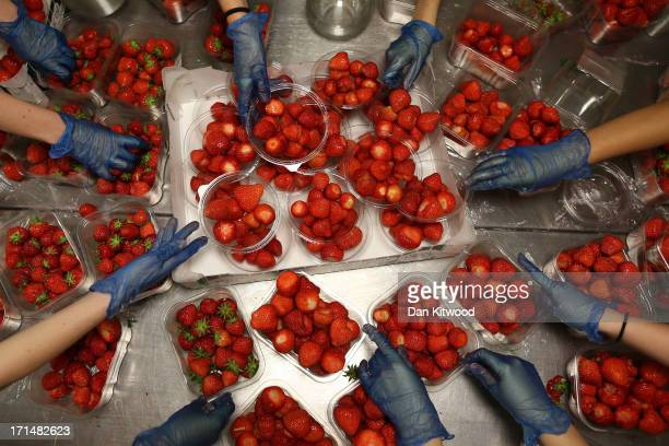 Strawberries are prepared during day two of the Wimbledon Lawn Tennis Championships at the All England Lawn Tennis and Croquet Club on June 25 2013...