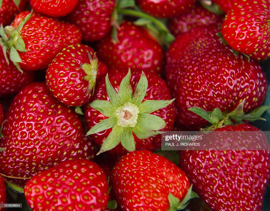 Strawberries are seen for sale at a 'farmers market' June 3, 2010, in downtown Washington, DC. AFP Photo/Paul J. Richards