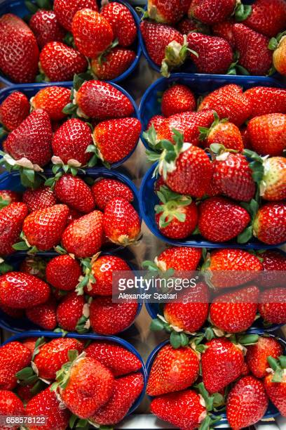 Strawberries for sale at the farmer's market in Bologna, Italy