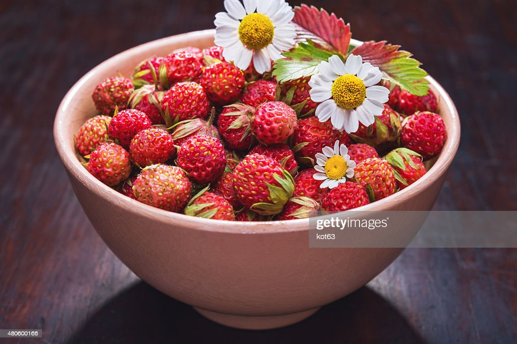 strawberries in a bowl and chamomile : Stock Photo